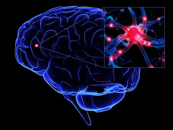 Trí nhớ của hệ thống tiêu hóa giúp chúng ta nhớ rõ nơi mình từng được ăn ngon - Ảnh 1.