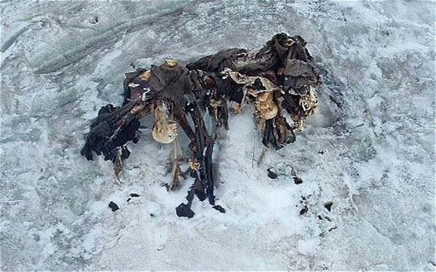 Sự ấm lên toàn cầu đang làm rã đông...những xác chết từ thời Thế chiến thứ nhất - Ảnh 1.