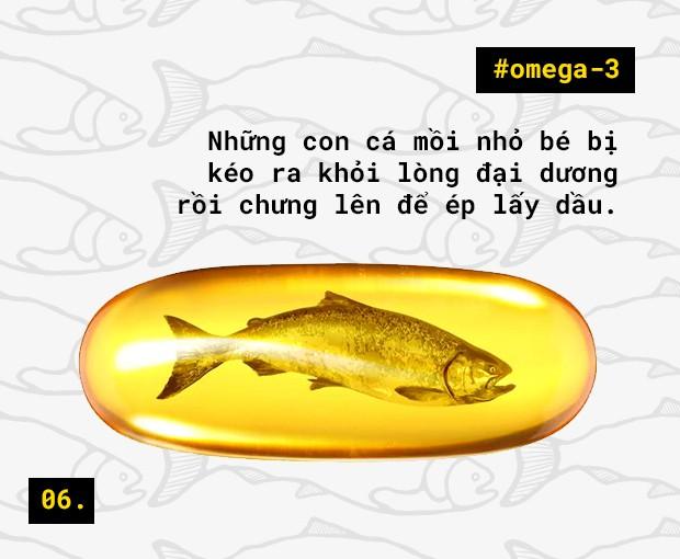 Tôi sẽ không uống dầu cá nữa, sau khi biết sự thật phía sau ngành công nghiệp này - Ảnh 8.