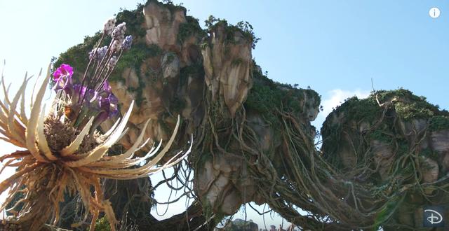 Các phần mới của Avatar sẽ có sự góp mặt của các sinh vật từ Disney World - Ảnh 4.