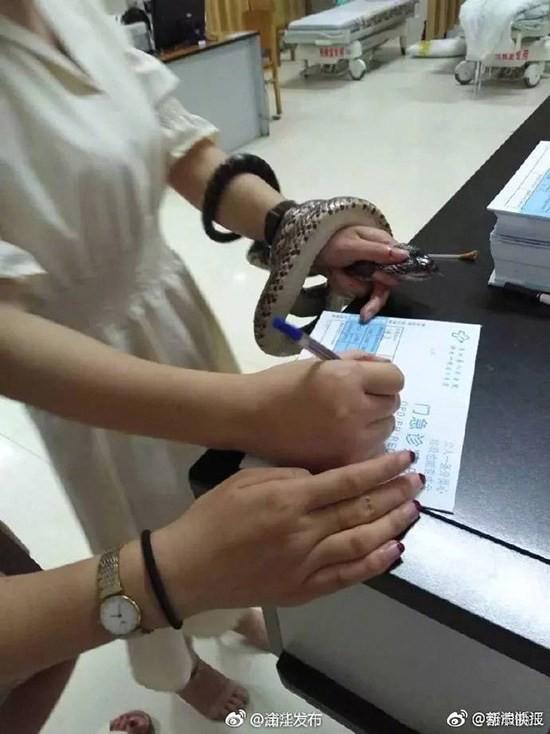 Trung Quốc: Bị cắn nhưng không biết là rắn gì, cô gái bình tĩnh túm cổ nó mang đến bệnh viện - Ảnh 3.