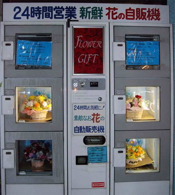 Nhật Bản: Máy bán hàng tự động không chỉ có nước mà còn bán đủ mọi thứ từ thú cưng cho đến đồ chơi người lớn - Ảnh 7.