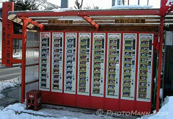 Nhật Bản: Máy bán hàng tự động không chỉ có nước mà còn bán đủ mọi thứ từ thú cưng cho đến đồ chơi người lớn - Ảnh 2.