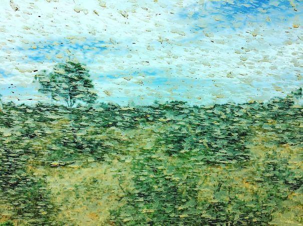 Chùm ảnh: Khi sự ngẫu hứng của thiên nhiên lại tạo ra những tác phẩm nghệ thuật sắp đặt đẹp hơn tranh vẽ - Ảnh 11.