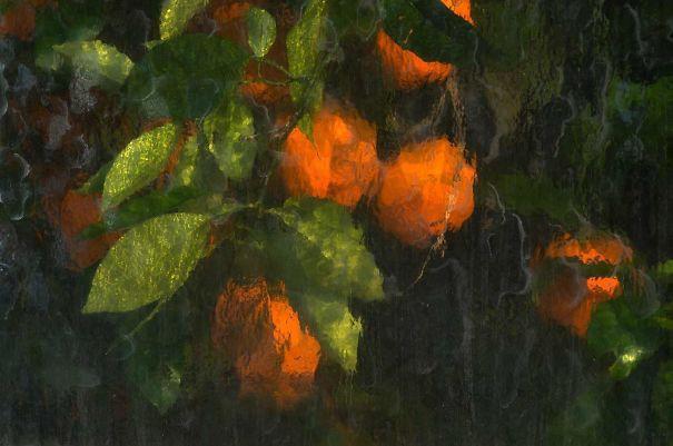 Chùm ảnh: Khi sự ngẫu hứng của thiên nhiên lại tạo ra những tác phẩm nghệ thuật sắp đặt đẹp hơn tranh vẽ - Ảnh 4.