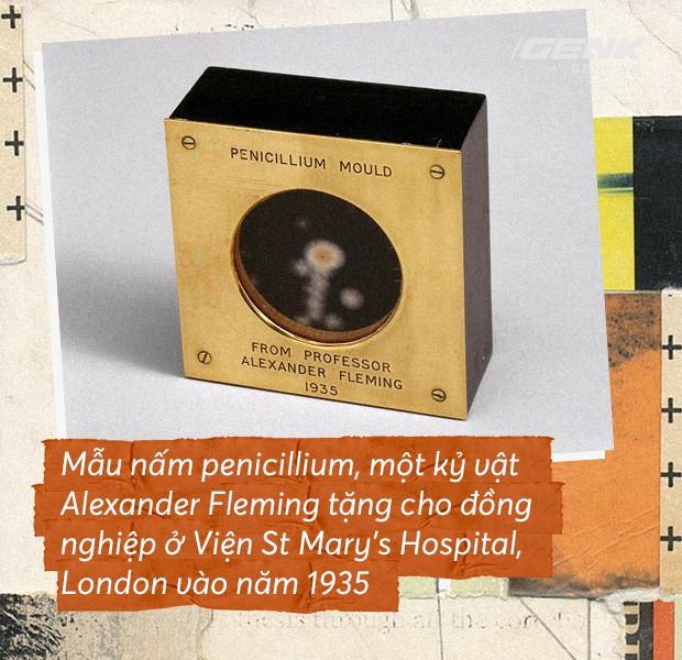 Ngày này đúng 90 năm về trước: có phải Alexander Fleming đã mở ra kỷ nguyên kháng sinh? - Ảnh 2.