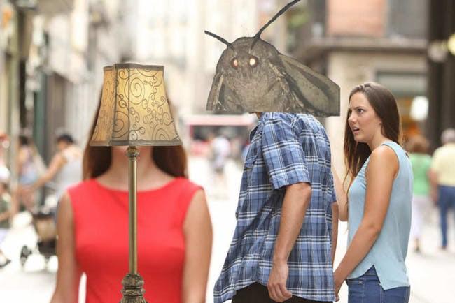 Nguồn gốc của loạt meme bướm đêm và chiếc đèn đang khuynh đảo Internet - Ảnh 7.