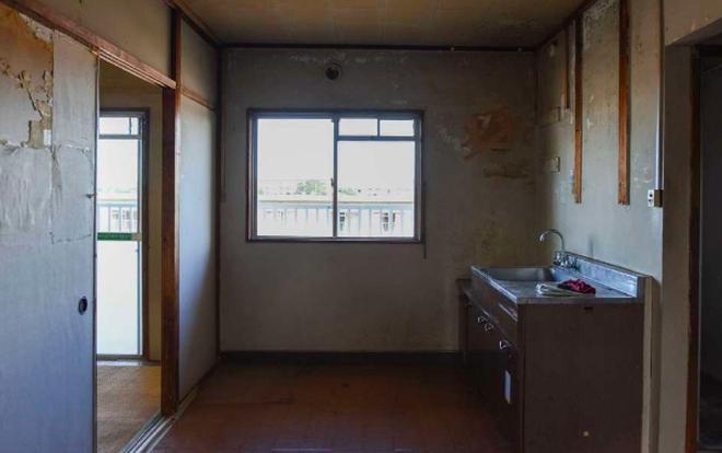 Ngành dịch vụ mới ở Nhật Bản: Dọn dẹp và tiêu thụ đồ đạc của người già neo đơn sau khi họ qua đời - Ảnh 5.