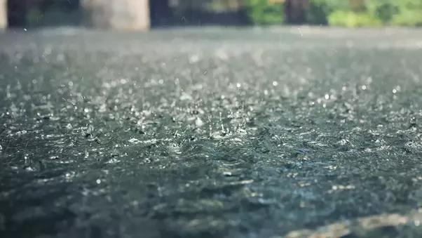 Lý giải cho mùi của mưa - mùi hương kì lạ mà chúng ta ngửi thấy mỗi khi trời mưa - Ảnh 1.