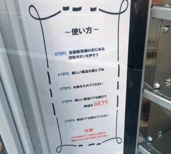Nhật Bản có cả máy bán mô hình đồ ăn giả tự động, trông ứa nước miếng vì tưởng thức ăn thật - Ảnh 6.