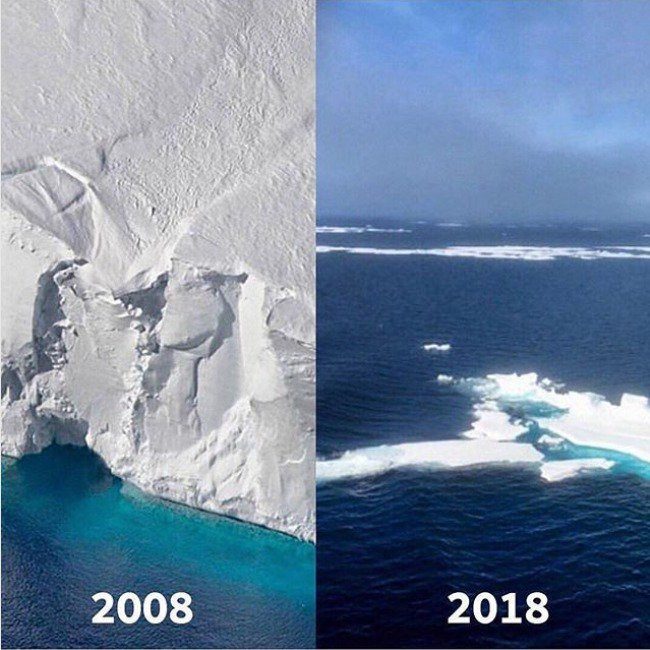 Trái Đất cũng có Thử thách 10 năm của riêng mình, nó đáng buồn hơn bạn tưởng nhiều - Ảnh 10.