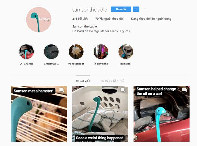 Ai đó đã lập Instagram cho cái muôi múc canh và giờ nó có hơn 70.000 người hâm mộ - Ảnh 1.