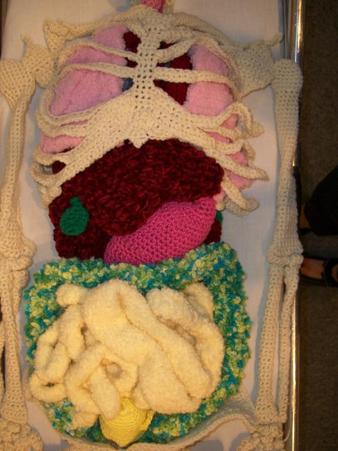 Cô nàng rảnh rỗi đan nguyên một bộ xương bằng len, có đủ cả lục phủ ngũ tạng và… một bữa ăn đang tiêu hóa dở - Ảnh 13.