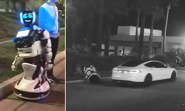 1 con robot bị xe tự lái Tesla tông chết, không thể tham dự CES 2019 - Ảnh 2.