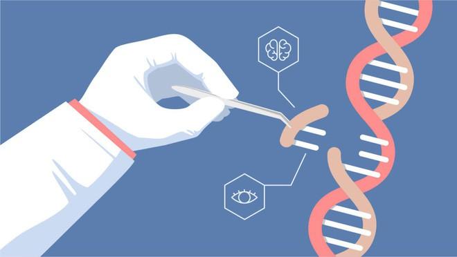 Nghiên cứu dự đoán hai bé gái chỉnh sửa gen ở Trung Quốc sẽ chết sớm vừa bị rút lại, kết quả của nó không đáng tin cậy - Ảnh 3.