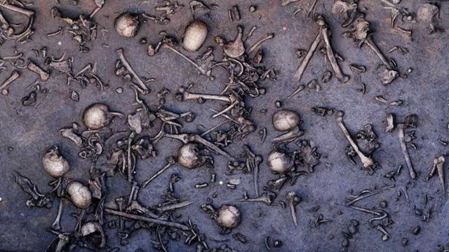 Từng có đến 9 chủng loài người trên Trái đất nhưng nay chỉ còn 1 - phải chăng người hiện đại đã tàn sát tất cả? - Ảnh 4.