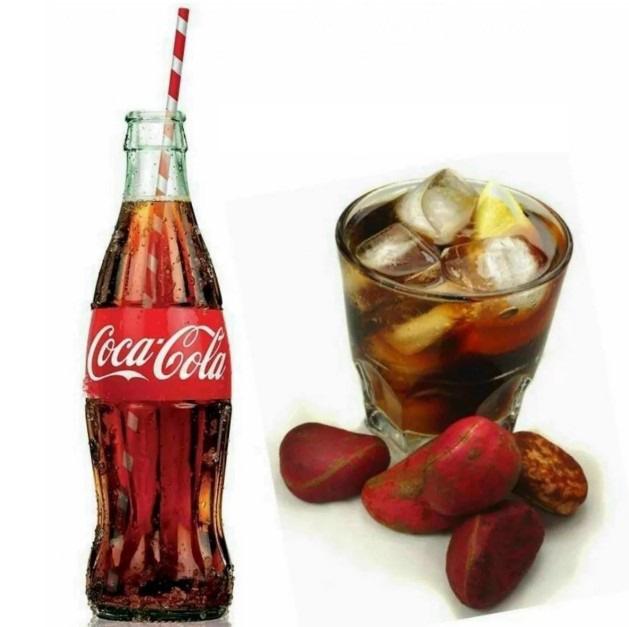 Vì sao Coca-Cola ra đời trước nhưng lại không thể kiện Pepsi tội ăn cắp sáng chế còn Pepsi lại không thể cáo buộc Coca-Cola vi phạm bản quyền? - Ảnh 6.
