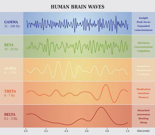 Tắt sóng não alpha, bạn sẽ kiểm soát được sự tập trung của mình - Ảnh 2.