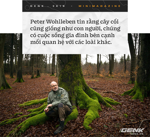 Nhà sinh vật học tin rằng cây cối biết nói chuyện, và chúng ta nên học ngôn ngữ của chúng - Ảnh 7.