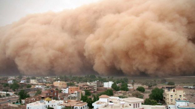 Trong biến đổi khí hậu, cả Châu Phi đang như người mộng du đi thẳng tới bờ vực - Ảnh 2.