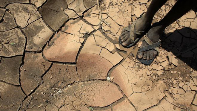 Trong biến đổi khí hậu, cả Châu Phi đang như người mộng du đi thẳng tới bờ vực - Ảnh 3.