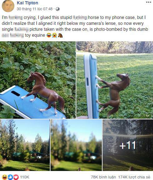 Internet cười bò với chùm ảnh của cô nàng dán con ngựa đồ chơi vào ốp lưng điện thoại nhưng lại che mất camera sau - Ảnh 1.