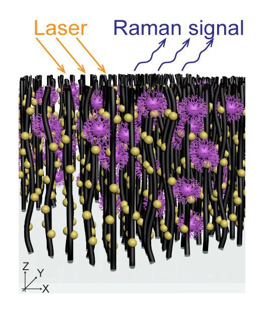 Các nhà khoa học phát minh ra chiếc rọ nano có thể bắt virus và xác định chủng của nó trong vài phút - Ảnh 1.