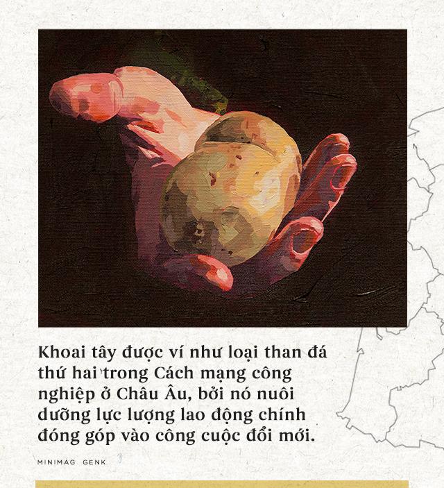 """Lịch sử thú vị của khoai tây: """"Quả táo quỷ"""" đem thịnh vượng đến cho những đế quốc - Ảnh 18."""