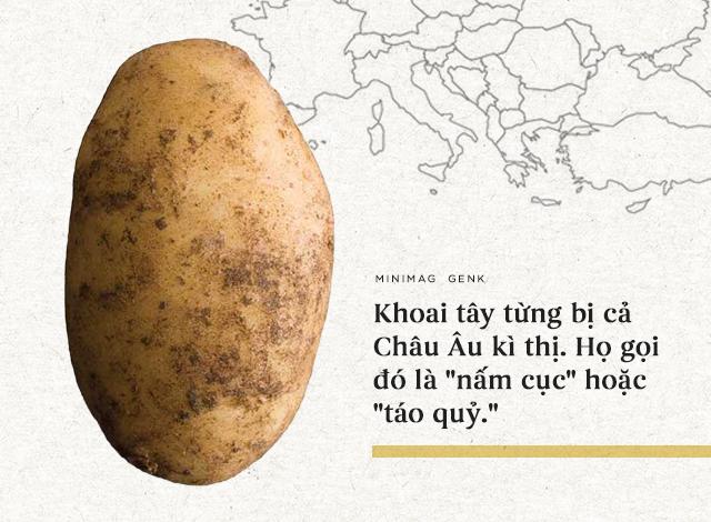"""Lịch sử thú vị của khoai tây: """"Quả táo quỷ"""" đem thịnh vượng đến cho những đế quốc - Ảnh 7."""