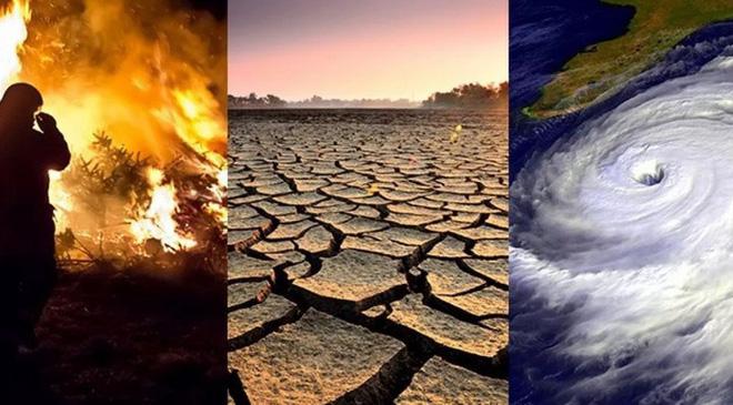 2019 được gọi là năm đại họa của biến đổi khí hậu: Chúng ta sẽ phải làm gì trong thập kỷ tới? - Ảnh 1.