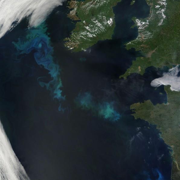 Biến đổi khí hậu đang làm thay đổi màu sắc các đại dương - Ảnh 3.