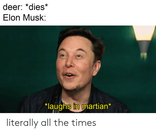 Elon Musk tham gia chương trình Meme review của Pewdiepie sau lời thỉnh cầu của cư dân mạng - Ảnh 3.