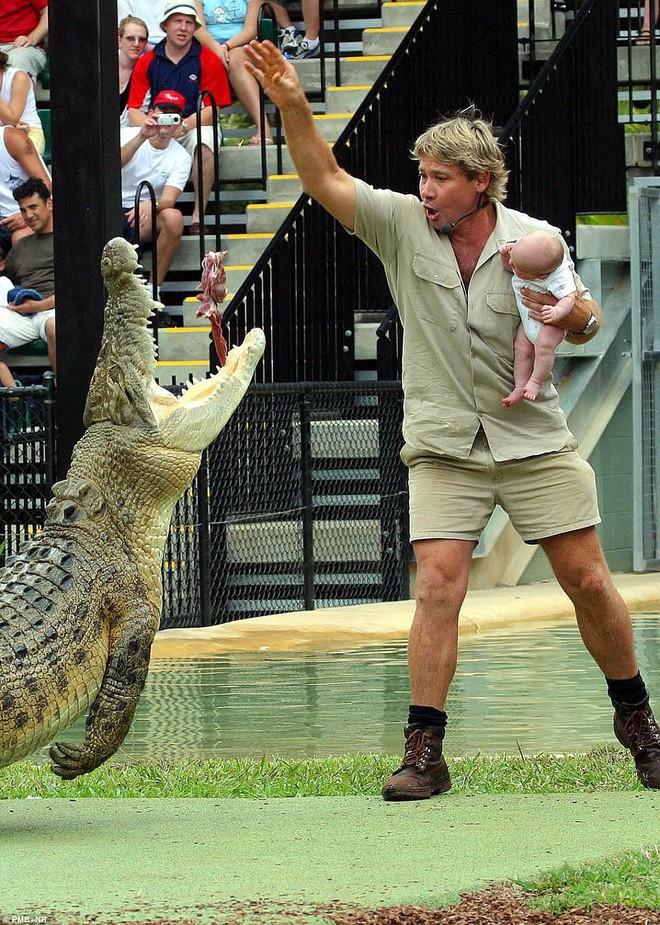 Peta lên án Google vì tưởng nhớ Steve Irwin: Anh ta đã chết trong khi quấy rối một con cá đuối gai độc - Ảnh 1.