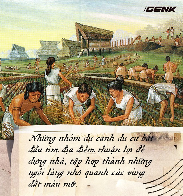 Nông nghiệp đã suýt chút nữa phá hủy nền văn minh nhân loại, đây là lý do tại sao - Ảnh 2.