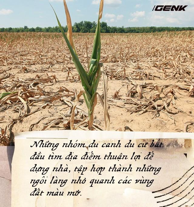 Nông nghiệp đã suýt chút nữa phá hủy nền văn minh nhân loại, đây là lý do tại sao - Ảnh 7.