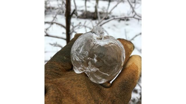 Tình trạng lạnh giá tại Mỹ tạo ra những quả táo ma bằng đá vô cùng độc đáo - Ảnh 2.