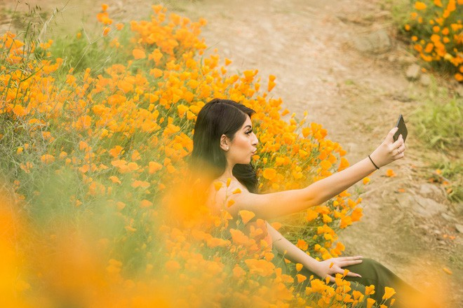 Xót xa đồi hoa California khổng lồ cực hiếm bị phá hoại chỉ vì làn sóng Instagram thích sống ảo - Ảnh 6.