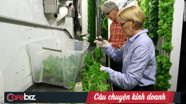 Freight Farms và công nghệ trồng rau tương lai: Không đất, không hóa chất, bất chấp thời tiết, hiệu quả gấp 80 lần và thu về 39.000 USD mỗi container - Ảnh 3.