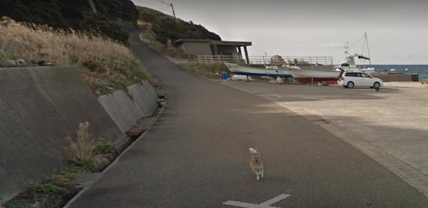 Chú chó Nhật hủy hoại mọi khung hình của Google Street View vì đuổi theo camera - Ảnh 7.