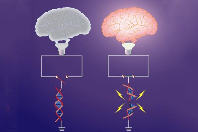 Chỉnh sửa gen có thể giúp con người vô cảm với mọi nỗi đau, nhưng sau đó thì sao? - Ảnh 3.