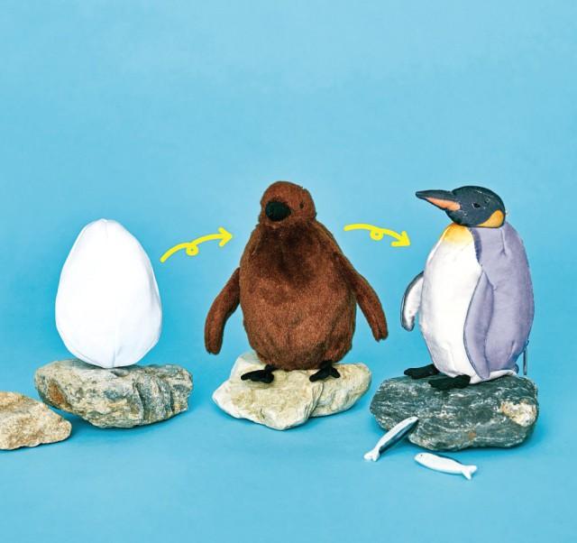 Thủy cung Nhật Bản gây sốt với loại thú nhồi bông cực sáng tạo, từ trứng nở thành chim trong vài giây - Ảnh 10.