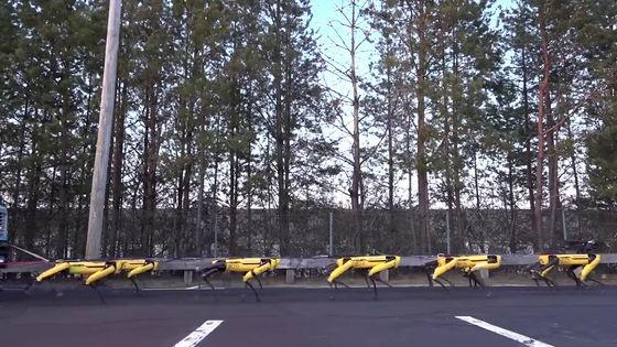 Boston Dynamics cho 10 chó robot SpotMini kéo xe tải để khoe sức mạnh - Ảnh 5.