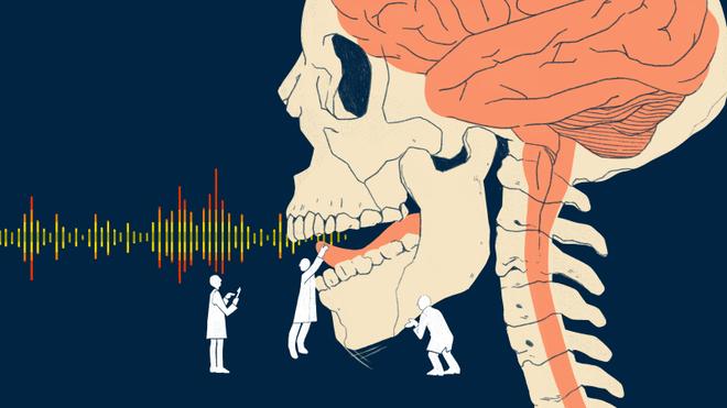 Các nhà khoa học đã có thể mô phỏng giọng nói bằng tín hiệu não - Ảnh 1.