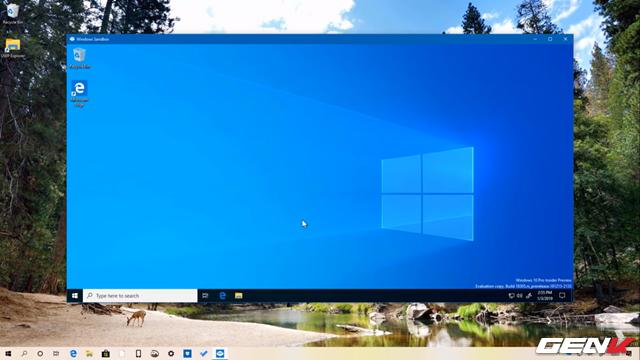 Cách kích hoạt và sử dụng Windows Sandbox trên Windows 10 May 2019 - Ảnh 12.
