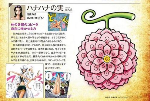 One Piece: Hình dáng thật trái ác quỷ của Chopper và Robin gây sốt khắp mạng xã hội - Ảnh 3.
