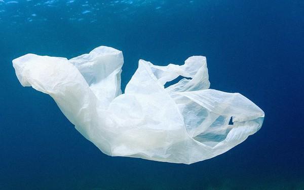 Cuộc cách mạng môi trường được thế giới mong chờ: Nhựa sẽ có thể được tái chế thành CO2 và nước - Ảnh 1.