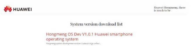 Sếp Huawei: Website về hệ điều hành HongMeng OS là giả mạo - Ảnh 4.