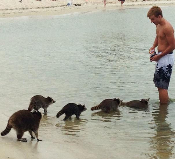 Giải trí cực mạnh với 15 thứ siêu kỳ cục trên bãi biển, số 3 sẽ khiến nhiều anh trai giật mình - Ảnh 14.