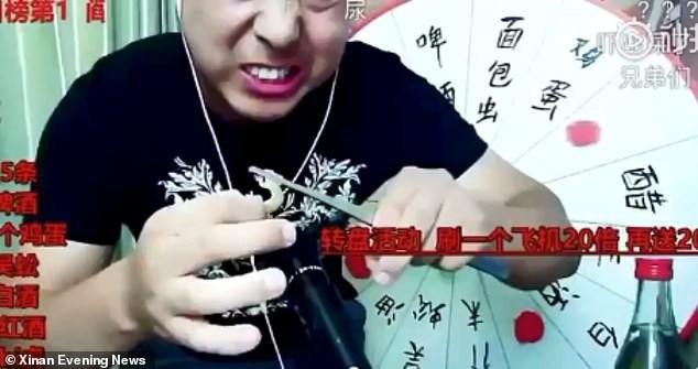 Livestream ăn thằn lằn sống, rết độc để câu view, thanh niên Trung Quốc chết thảm khi vẫn đang phát trực tiếp - Ảnh 1.