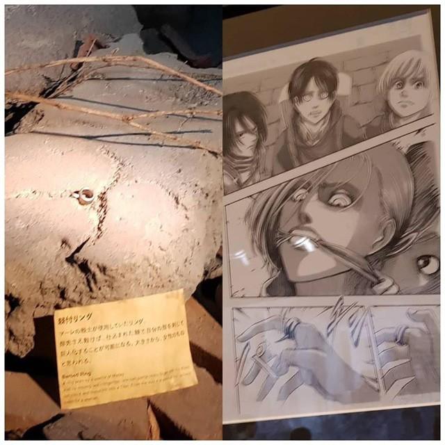 Tổng hợp những mẫu vật được trưng bày ở triển lãm cuối cùng của Manga Attack on Titan tại Nhật (Phần 2) - Ảnh 5.